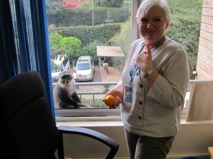 fagan with monkey in nairobi