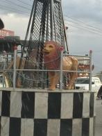 Roundabouts Kabul style